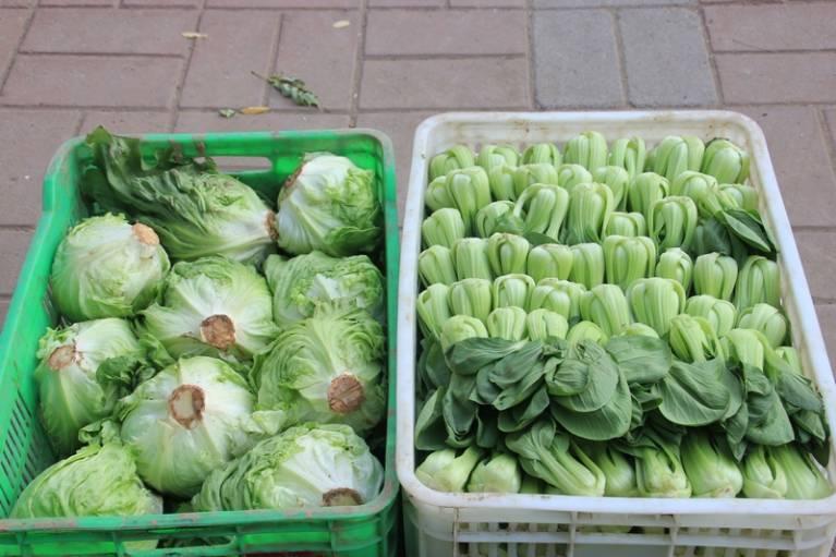 晨拍社区里的蔬菜直通车13.jpg